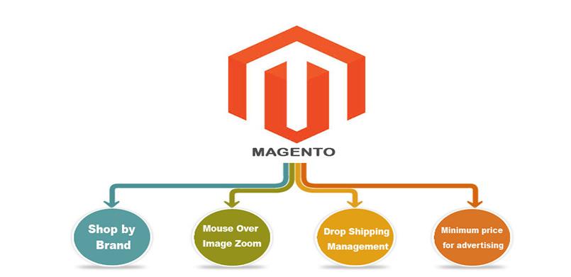 Set up a magento development
