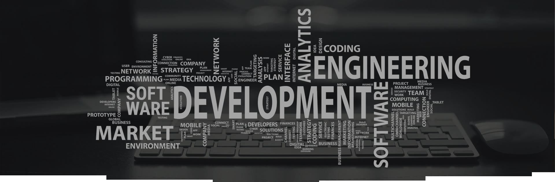 software_banner