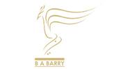 babarry-logo